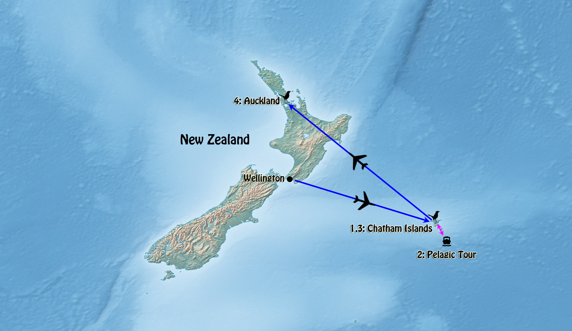 New Zealand Chatham Islands Extension I 2018