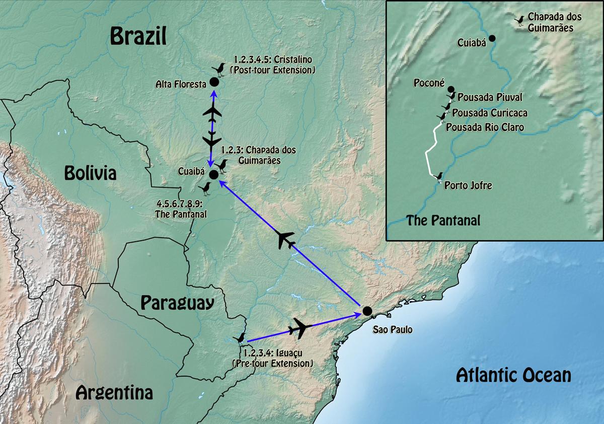 Rockjumper Birding Tours Worldwide Bird Tours